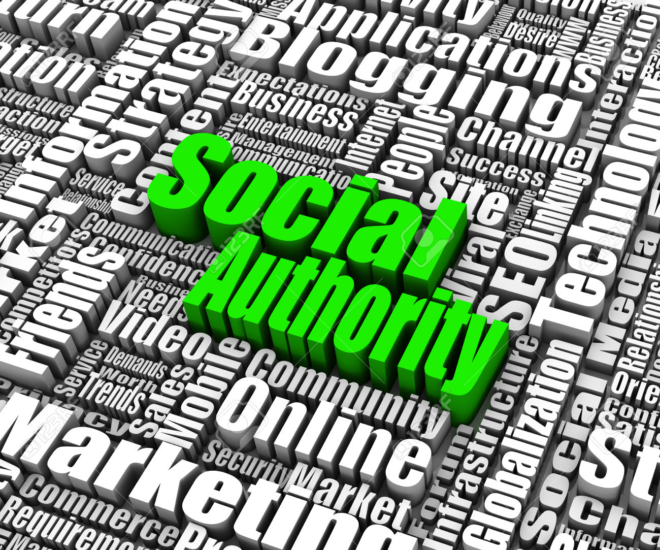 Amy Schmittauer teaches how to develop authority with social media